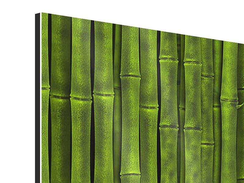 Panorama Aluminiumbild 3-teilig Wasserspiegelung Bambus