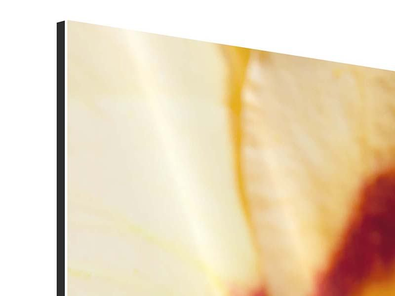 Panorama Aluminiumbild 3-teilig Riesenlilie