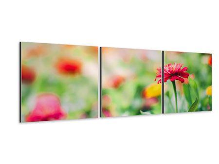 Panorama Aluminiumbild 3-teilig Im Blumengarten
