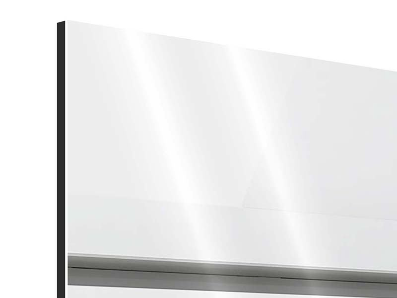 Panorama Aluminiumbild 3-teilig Weisser Flügel