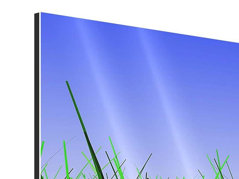 Panorama Aluminiumbild 3-teilig Im Gras