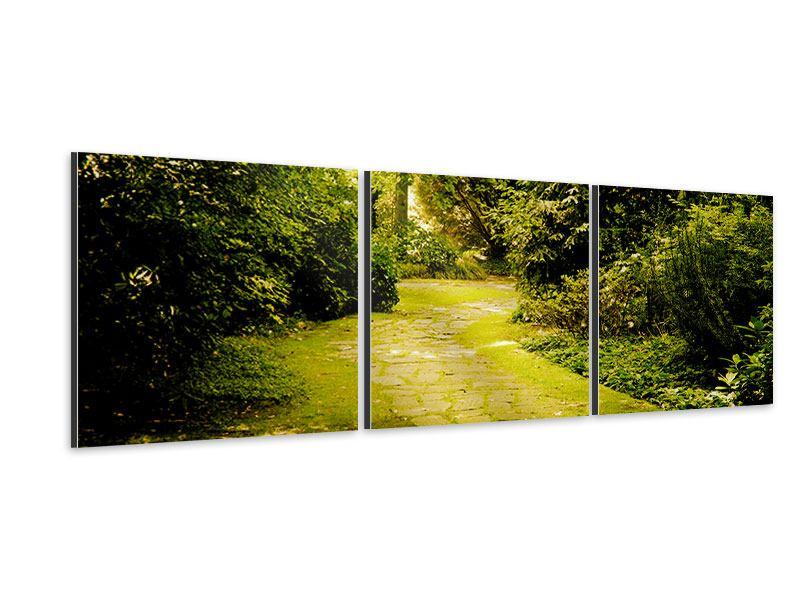 Panorama Aluminiumbild 3-teilig Der bemooste Weg