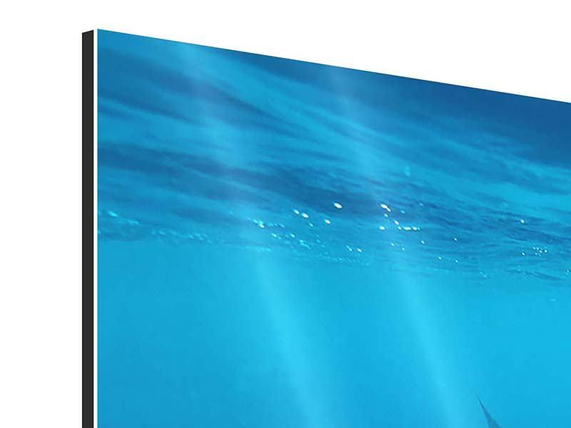 Panorama Aluminiumbild 3-teilig Der Walhai