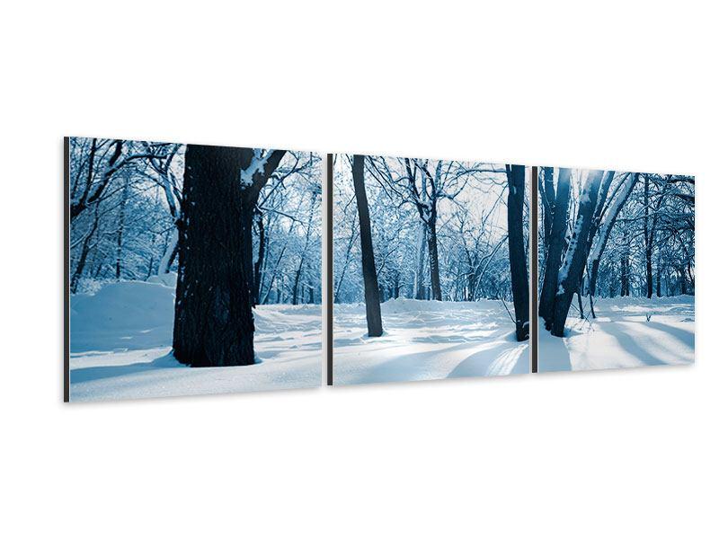 Panorama Aluminiumbild 3-teilig Der Wald ohne Spuren im Schnee