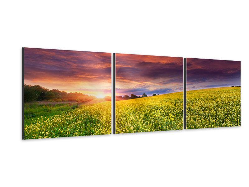 Panorama Aluminiumbild 3-teilig Abenddämmerung