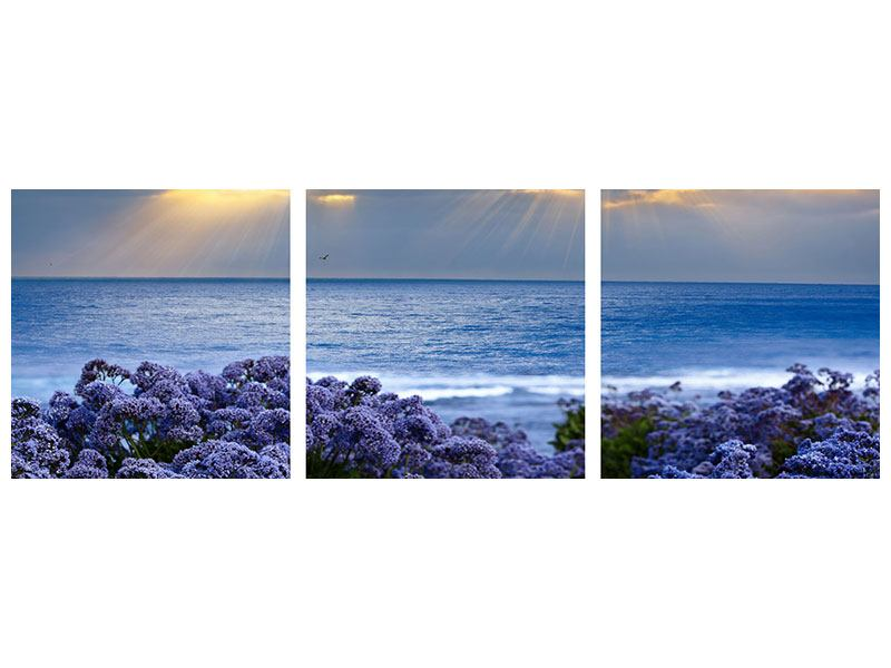 Panorama Aluminiumbild 3-teilig Der Lavendel und das Meer