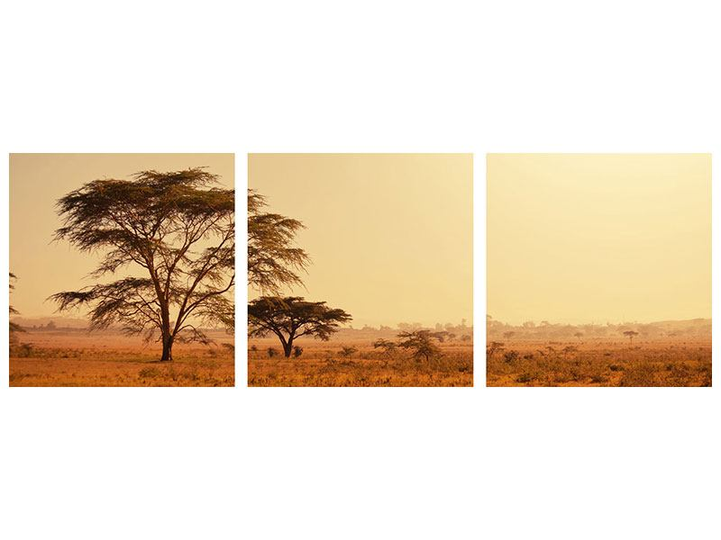 Panorama Aluminiumbild 3-teilig Weideland in Kenia