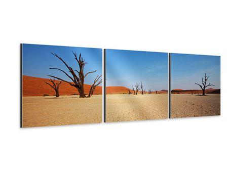 Panorama Aluminiumbild 3-teilig Wüste