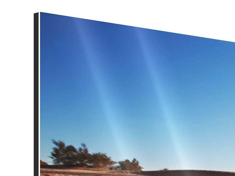 Panorama Aluminiumbild 3-teilig Dürre