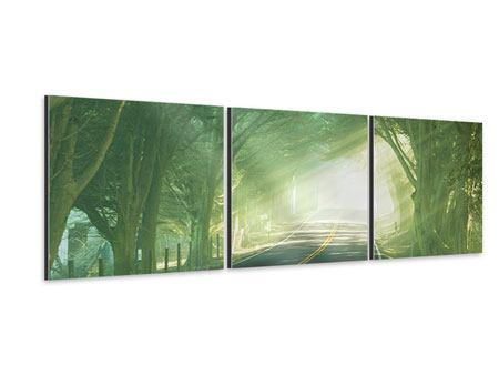 Panorama Aluminiumbild 3-teilig Die Allee