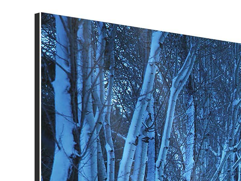Panorama Aluminiumbild 3-teilig Winterbäume