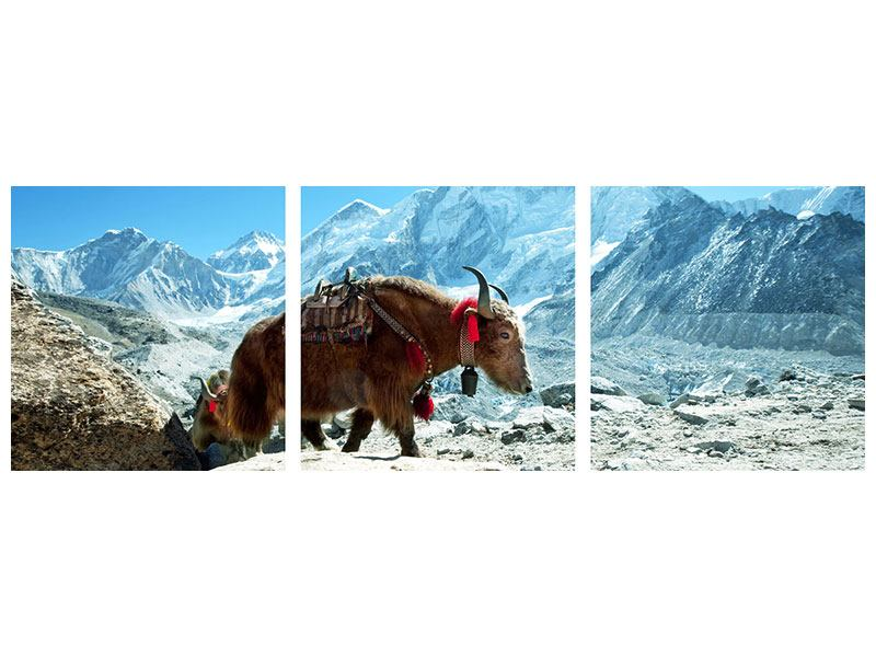 Panorama Aluminiumbild 3-teilig Das Himalaya-Gebirge