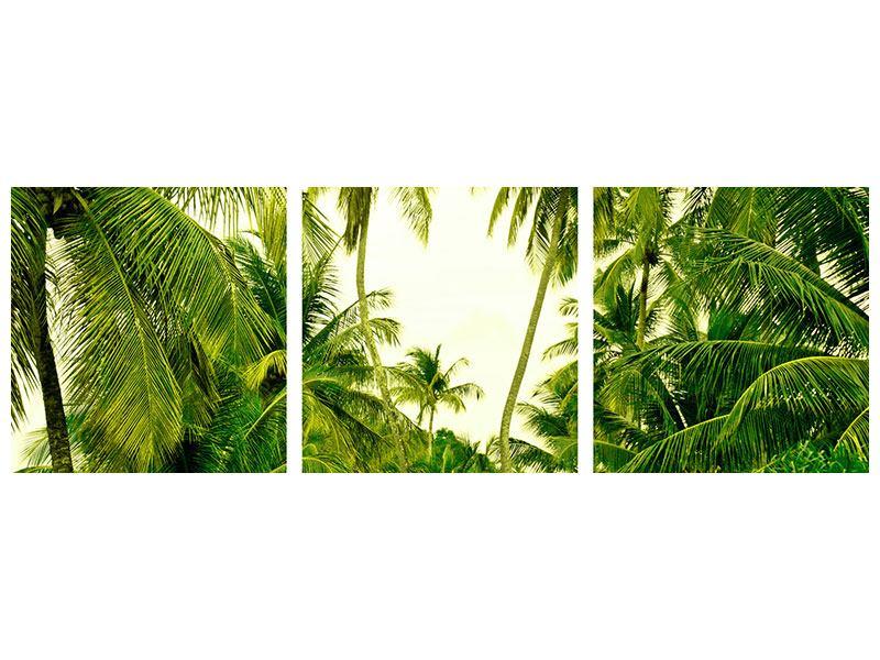 Panorama Aluminiumbild 3-teilig Reif für die Insel
