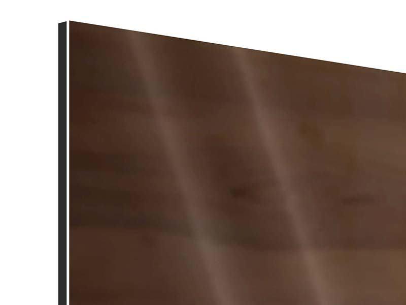 Panorama Aluminiumbild 3-teilig Speck