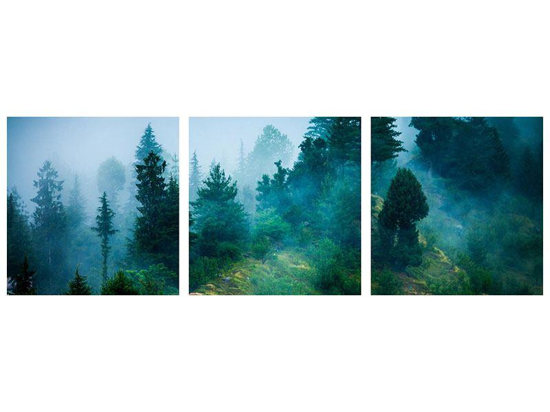 Panorama Aluminiumbild 3-teilig Geheimnisvoller Wald