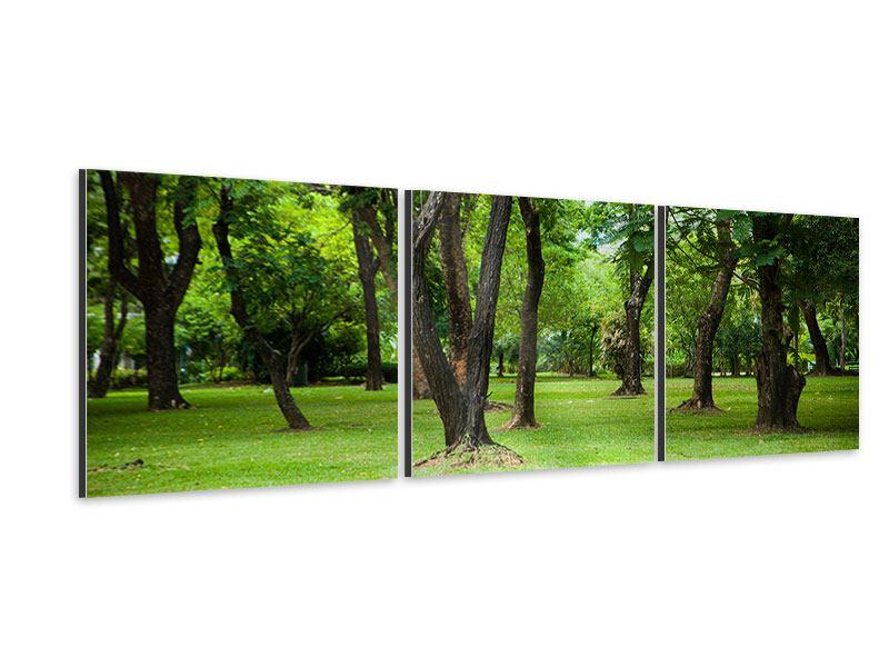 Panorama Aluminiumbild 3-teilig Kirschbaum-Garten