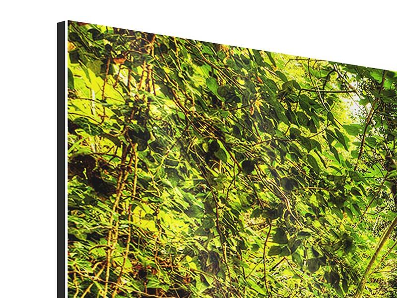 Panorama Aluminiumbild 3-teilig Wasserfall im Wald