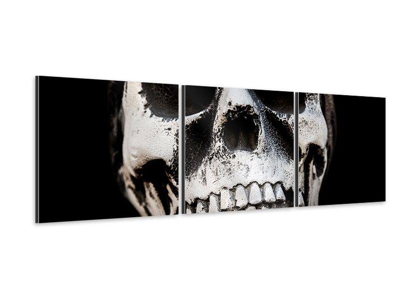 Panorama Aluminiumbild 3-teilig Skull
