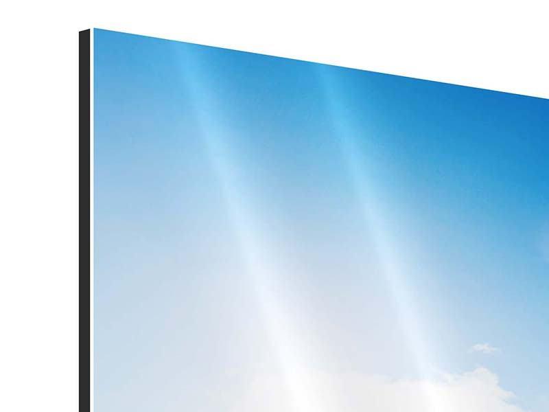 Panorama Aluminiumbild 3-teilig Spuren im Sand