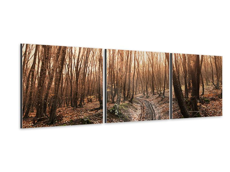 Panorama Aluminiumbild 3-teilig Der kahle Wald