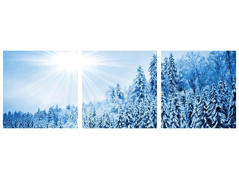 Panorama Aluminiumbild 3-teilig Wintermärchen