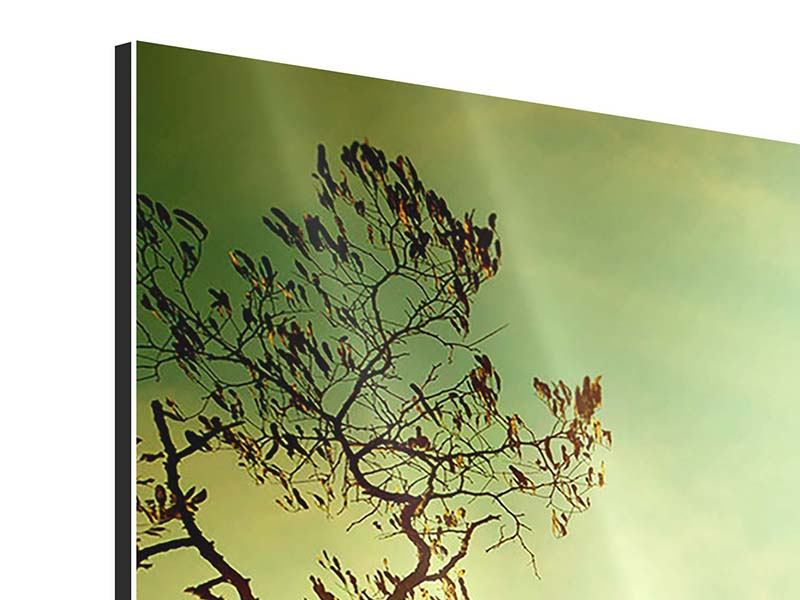 Panorama Aluminiumbild 3-teilig Bäume im Herbst