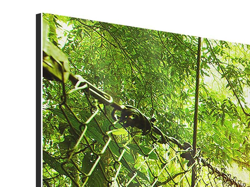 Panoramic 3 Piece Aluminium Print Suspension Bridge