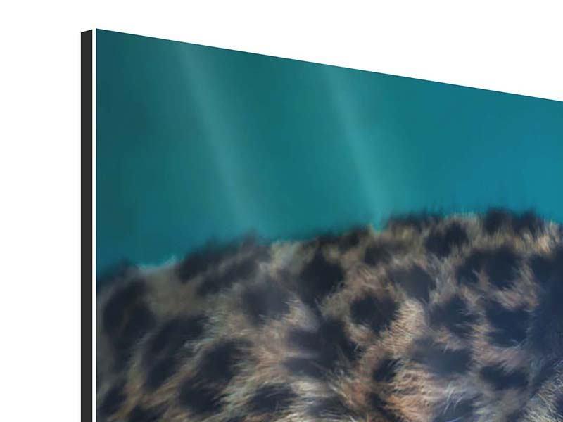 Panorama Aluminiumbild 3-teilig Leopard XL