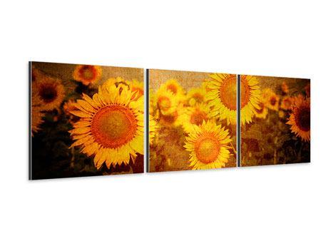 Panorama Aluminiumbild 3-teilig Retro-Sonnenblumen