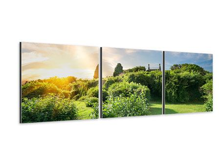 Panorama Aluminiumbild 3-teilig Sonnenaufgang im Park
