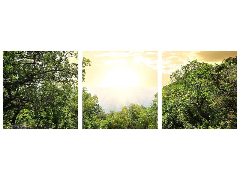 Panorama Aluminiumbild 3-teilig Am Ende des Waldes