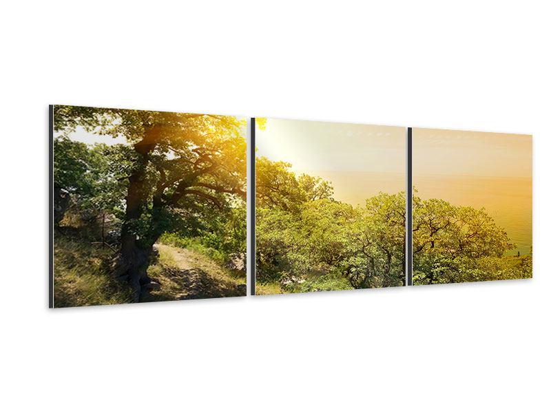 Panorama Aluminiumbild 3-teilig Sonnenuntergang in der Natur