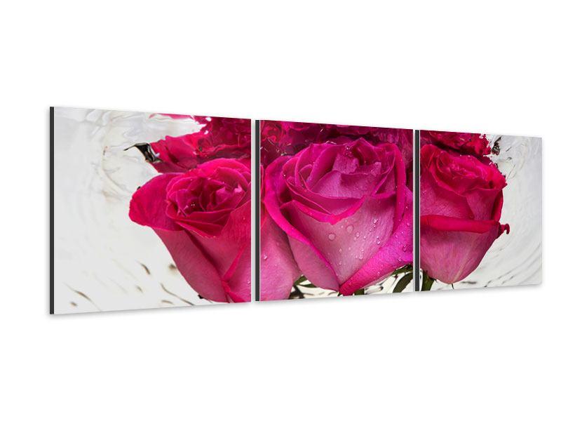 Panorama Aluminiumbild 3-teilig Die Rosenspiegelung