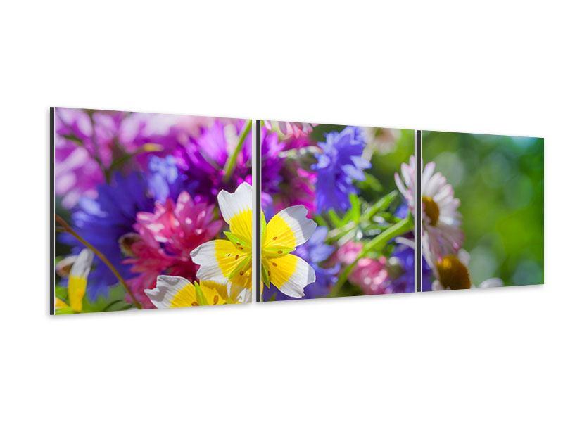 Panorama Aluminiumbild 3-teilig XXL Gartenblumen