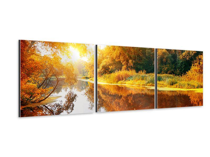 Panorama Aluminiumbild 3-teilig Waldspiegelung im Wasser