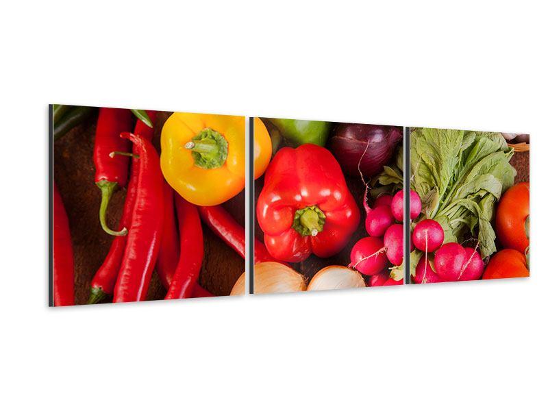 Panorama Aluminiumbild 3-teilig Gemüsefrische