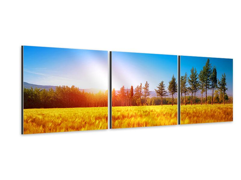 Panorama Aluminiumbild 3-teilig Der Herbst