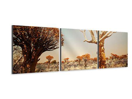 Panorama Aluminiumbild 3-teilig Afrikanische Landschaft