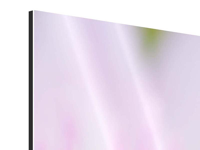 Panorama Aluminiumbild 3-teilig XXL-Lilie