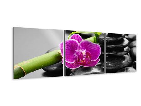 Panorama Aluminiumbild 3-teilig Feng-Shui-Orchidee