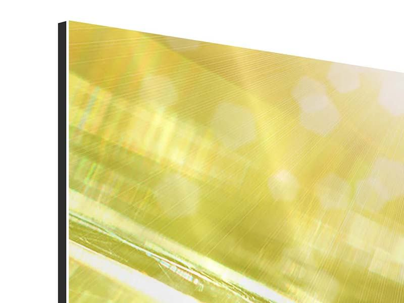 Panorama Aluminiumbild 3-teilig Marienkäfer im Sonnenlicht