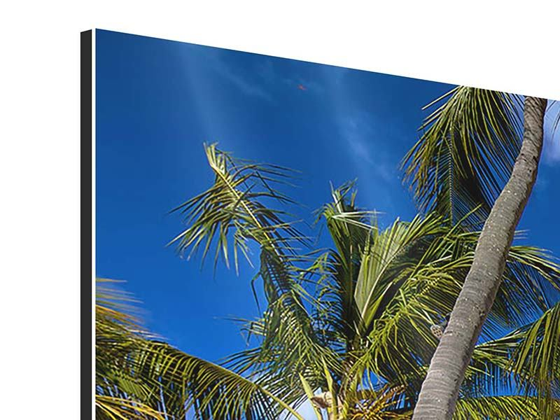 Panorama Aluminiumbild 3-teilig Mauritius