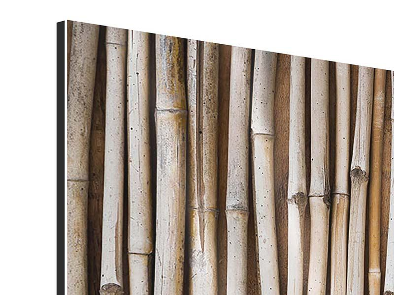 Panorama Aluminiumbild 3-teilig Getrocknete Bambusrohre