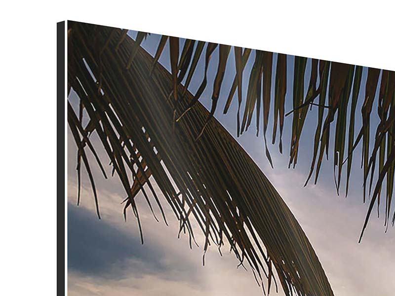 Panorama Aluminiumbild 3-teilig Strandpalme