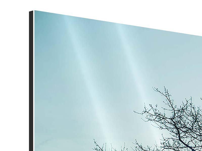 Panorama Aluminiumbild 3-teilig Der Zauberbaum
