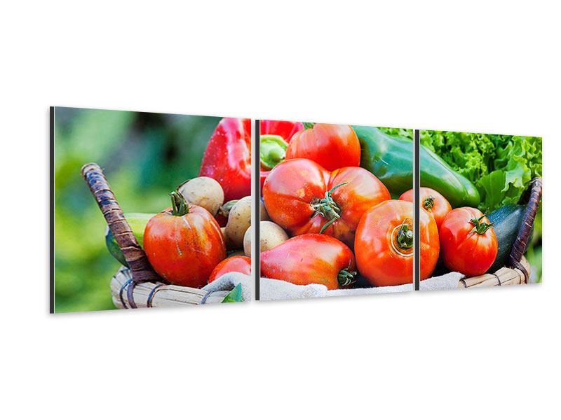 Panorama Aluminiumbild 3-teilig Gemüsekorb