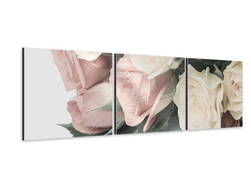 Panorama Aluminiumbild 3-teilig Rosenromantik