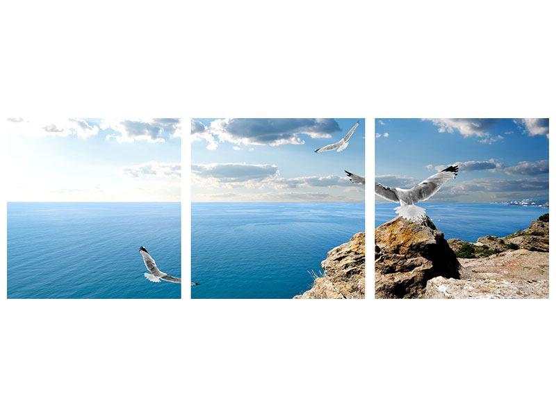 Panorama Aluminiumbild 3-teilig Die Möwen und das Meer