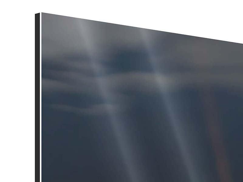 Panorama Aluminiumbild 3-teilig Seerose in der Abenddämmerung