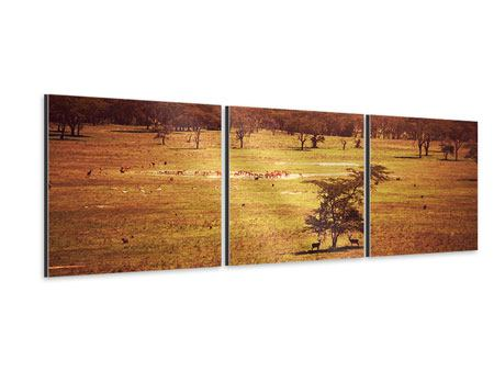 Panorama Aluminiumbild 3-teilig Malerisches Afrika